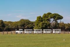 Turystyczny pociąg jedzie przez safari parka fotografia stock