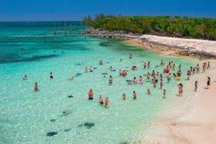 Turystyczny stingray doświadczenie w Bahamas fotografia stock
