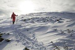 Turystyczny wycieczkowicz w jaskrawej czerwonej odzieży z chodzącymi kijami pochodzi zdjęcie stock