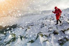 Turystyczny wycieczkowicz w jaskrawej czerwonej odzieży z chodzącymi kijami pochodzi zdjęcia stock