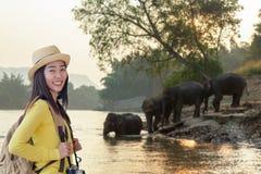 Turystyk kobiet azjatykci plecak widzii dzikiego słonia w pięknym lesie przy Kanchanaburi prowincją w Tajlandia dla wycieczek v obrazy royalty free