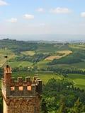 Tuscan αμπελώνες & άλση ελιών 01 Στοκ εικόνα με δικαίωμα ελεύθερης χρήσης
