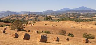 Tuscan δέματα σανού Στοκ Φωτογραφία