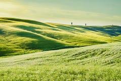 Tuscan τοπίο, με την πράσινη χλόη και τους κυλώντας λόφους Στοκ Εικόνα