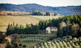 Tuscan τοπίο με το κυπαρίσσι, τα δέντρα και τα αρχαία κτήρια στοκ εικόνα με δικαίωμα ελεύθερης χρήσης