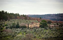 Tuscan τοπίο με το κυπαρίσσι, τα δέντρα και τα αρχαία κτήρια Στοκ Εικόνες