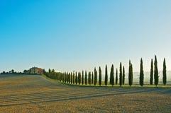 Tuscan τοπίο Στοκ Εικόνες