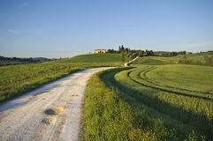 Tuscan. A nice view of italian landscape Royalty Free Stock Images