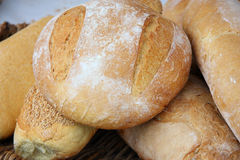 Tuscan Bread. Typical bread of my land, Tuscan, Italy Royalty Free Stock Photo