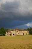 Tuscan cornfield 2 λόφων Στοκ Φωτογραφίες