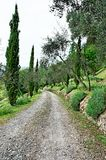 Tuscan country Royalty Free Stock Photos