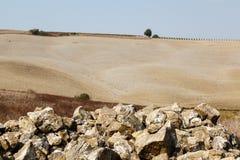 Tuscan Country near Montalcino Royalty Free Stock Photos