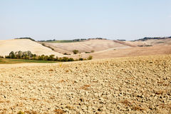 Tuscan Country near Montalcino Royalty Free Stock Images