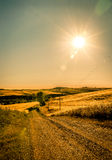 Tuscan country road royalty free stock photography