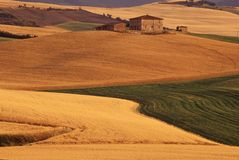 Tuscan countryside. Typical landscape with wheat fields and farmhouse in the tuscan countryside royalty free stock photos