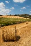 Tuscan countryside Stock Photos