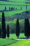 Tuscan countryside. Scenic during spring Stock Photography