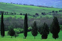 Tuscan countryside. Scenic during spring Stock Photos