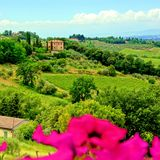 Tuscan countryside Stock Images