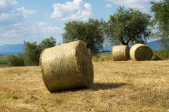 Tuscan countryside with bales of hay Royalty Free Stock Images