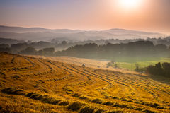 Tuscan Countryside at Dawn with Haze Stock Photography