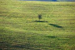 Tuscan Countryside, Italian landscape Stock Photos