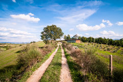 Tuscan countryside landscape Stock Images