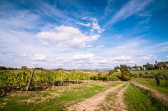 Tuscan countryside landscape Royalty Free Stock Images