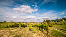 Tuscan countryside landscape. With blue sky, clouds and meadows Stock Photos