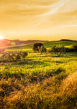 Tuscan countryside landscape Royalty Free Stock Photography