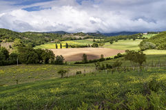 Tuscan countryside in spring Stock Photos
