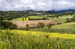 Tuscan countryside in spring Stock Image