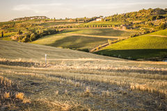 Tuscan countryside at sunset near Montepulciano Royalty Free Stock Photo