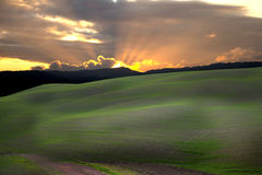 Tuscan county 3 Royalty Free Stock Images
