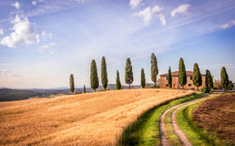 Tuscan cypress. Tuscan landscape with farmhouse and cypress trees royalty free stock photos