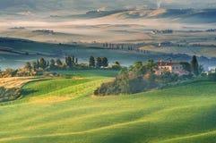 Tuscan dimma på det lantliga fältet i solsken, Italien Fotografering för Bildbyråer