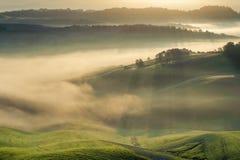 Tuscan fält som slås in i mist, Italien Fotografering för Bildbyråer