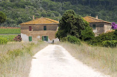 Tuscan farm Royalty Free Stock Images