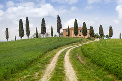 Tuscan farm villa. Farm villa in Tuscany with cypress trees Stock Image