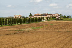 Tuscan farm villa. Farm villa in Tuscany with cypress trees Royalty Free Stock Image