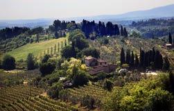 Tuscan Farm Vineyard San Gimignano Tuscany Italy. Tuscan Farm Winery Green Trees Tractor Vineyard San Gimignano Tuscany Italy Stock Photo