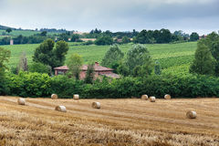 Tuscan farmhouse in Italy. Typical Tuscan farmhouse in Italy royalty free stock photo