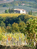 Tuscan Farmhouse & Landscape5. Tuscan landscape, Farmhouse and Autumnal colours of vines near San Gimignano royalty free stock images