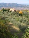 Tuscan Farmhouse &  Landscape6 Stock Images