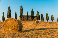 Tuscan Farmhouse. Traditional Tuscan farmhouse wth cypresses and hay royalty free stock photography