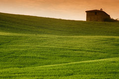 Tuscan Fields. Farmhouse overlooking green fields in Tuscany, Italy royalty free stock photos