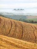 Tuscan Fields Stock Image