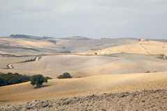 Tuscan fields in autumn / fall Stock Photo