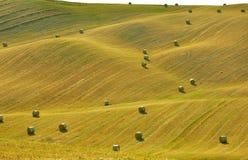 Tuscan fields,  Italy Royalty Free Stock Photos
