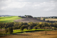 Tuscan Fields. In Italy during a warm summer day Royalty Free Stock Image